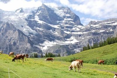 Jungfrau_DSC_0274