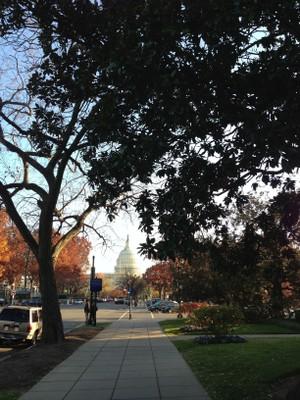 The U.S. Capitol_IMG_0606