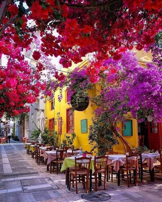 Argolis_Greece_030321A